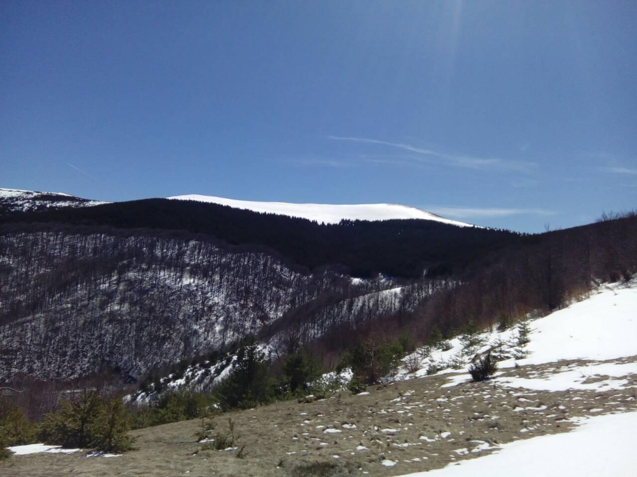 Da li će se graditi nove ski staze: Besna kobila. Foto Grad Vranje