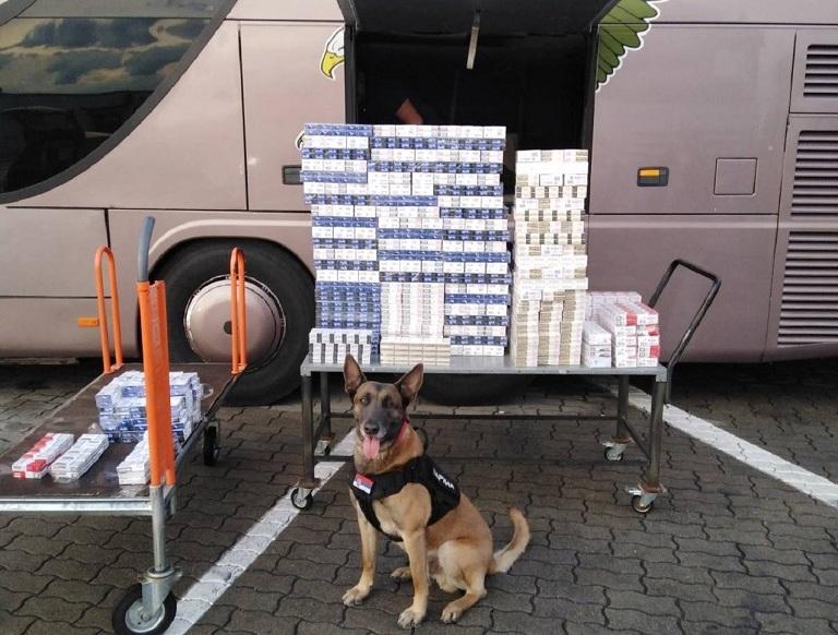 Specijalno obučeni pas otkrio tovar cigareta. Foto Uprava carina