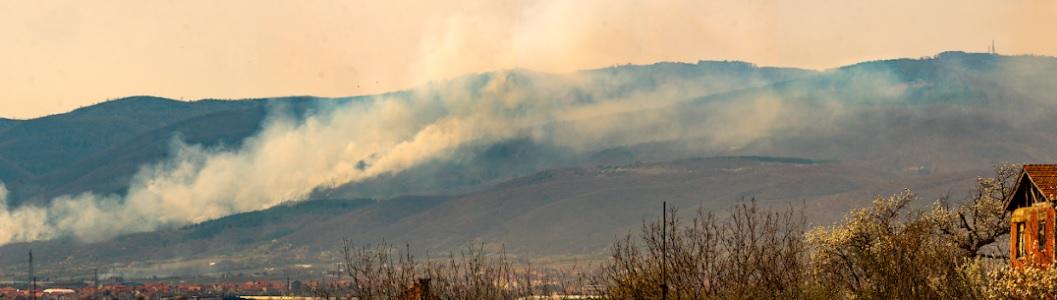 Požar u atarima Dubnice i Vrtogoša: slikano u utorak 2. aprila oko 14 časova. Foto Ivica Stošić